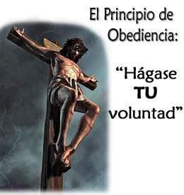 imagenes de dios hagase tu voluntad la autoridad de dios lecci 243 n 10 de la vida cristiana