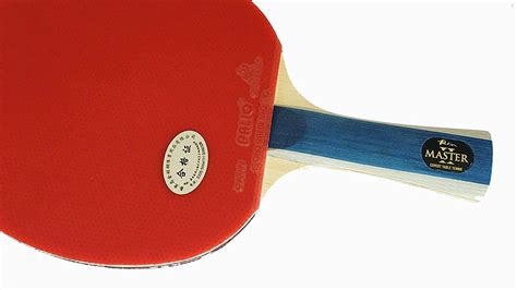 best table the best table tennis bat for beginners don t waste your