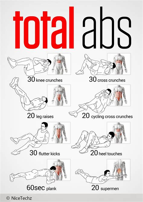 Top 8 Abs Exercises by Total Abs Workout Nicetechz
