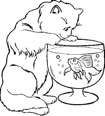 ragdoll cat coloring page dessin 224 imprimer du net coloriage chat