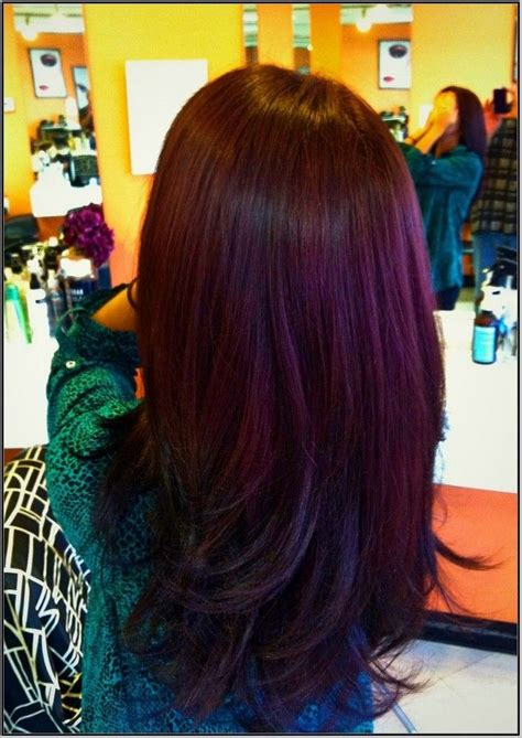 burgundy plum hair color best 25 burgundy plum hair ideas on plum hair