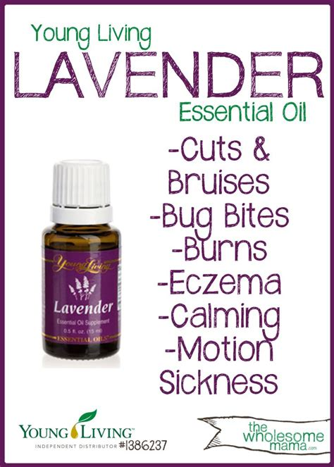 young living essential oils desk lavender oil young living www imgkid com the image kid