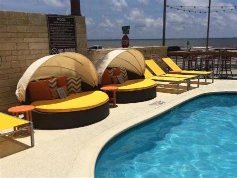 pool beds pool side day beds picture of doubletree by hilton hotel galveston beach galveston