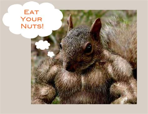 healthy fats besides nuts go nuts eat healthy fats popsugar fitness