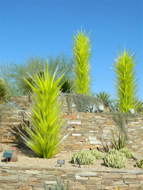 Scottsdale Az Botanical Gardens Pin By Susan Zeman On Green