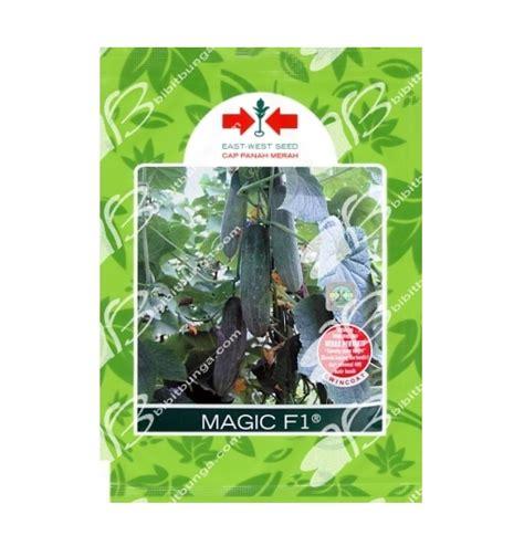 Benih Bibit Biji Selada Merah Lettuce Salad Bowl Lokal benih timun magic f1 800 biji panah merah bibitbunga