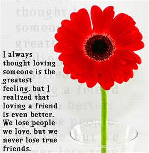 quotes for friends farewell quotes images