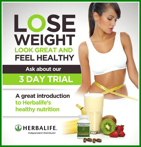 3 protein shakes a day diet 3 shakes a day weight loss