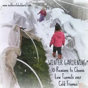 Winter Is Most Definitely Here by 10 Reasons Why Low Tunnels Beat Cold Frames Homestead