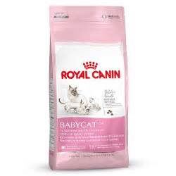 royal canin mother amp babycat croquettes pour chatte et chaton zooplus