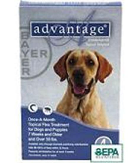 advantage plus for dogs flea treatment for dogs 183 advantage frontline plus digital