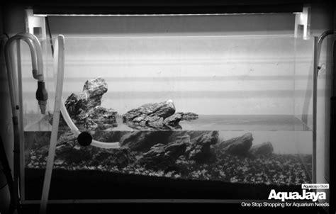 cara membuat aquascape gaya iwagumi cara membuat aquascape style iwagumi aquajaya