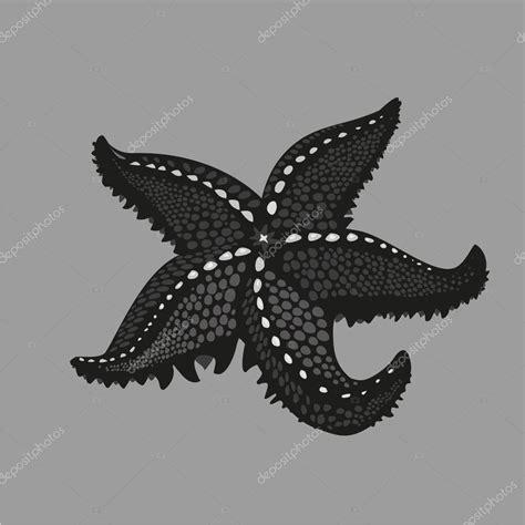 tatouage etoile de mer polynesienne 201 toile de la mer noire sur fond isol 233 illustration de