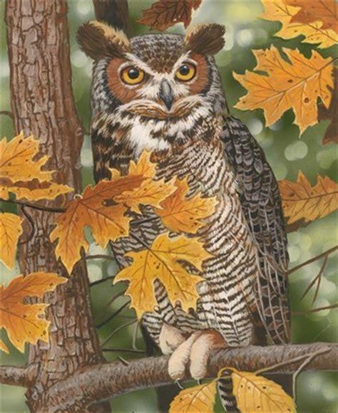 autumn owl fine art print  william vanderdasson