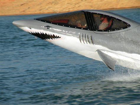 jet shark boat all graphical dolphin shark jet ski