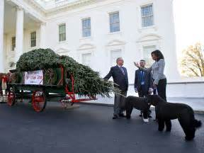 white house holiday tree michelle obama kicks off holiday season as first christmas tree arrives at the white