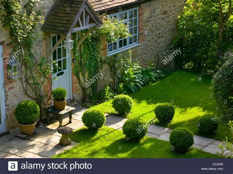 Cottage Garden Box by Path Across Lawn Edged With Box Topiary Leading To Cottage