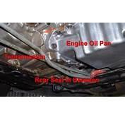 Oil Leaks In Cars Repair Cost  Best Modified Dur A Flex