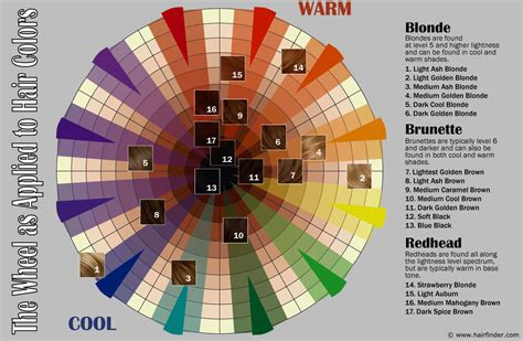 color wheel hair how to use the hair color wheel