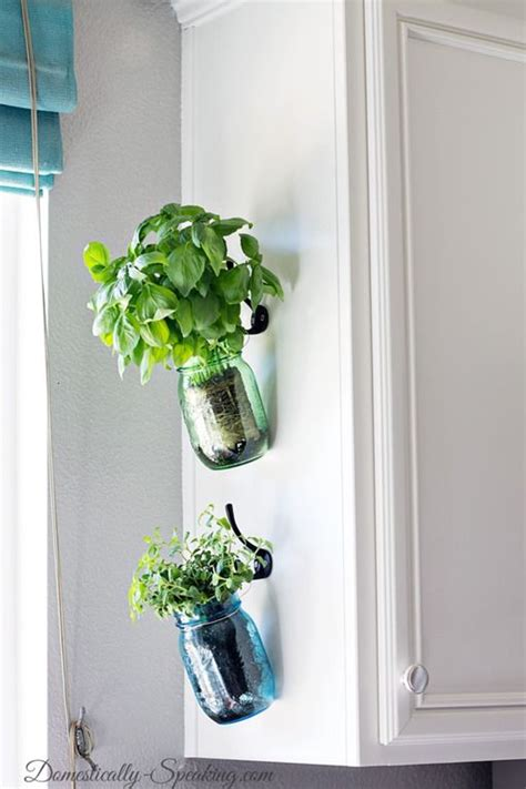10 best ideas about hanging herbs on pinterest hanging