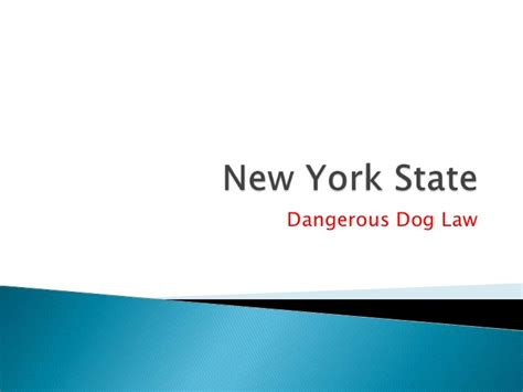 new york state domestic relations law section 11 dangerous dogs overview