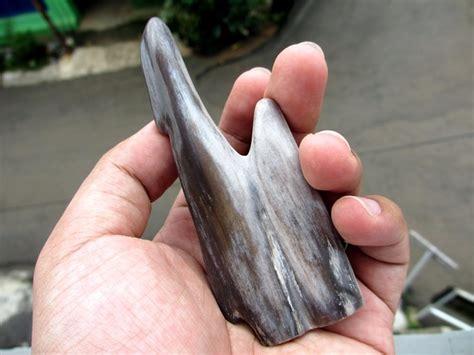 Batu Mustika Fosil Kayu mustika fosil kayu purba ma047 mustikaalam batu