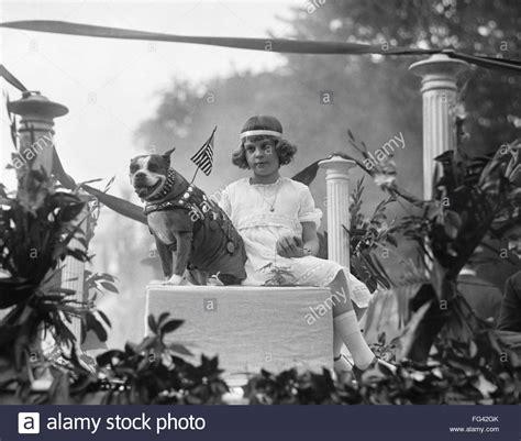 Sergeant Stubby Most Decorated You Found Any Alamy Photos May 2017 Page 4 Ask The Forum Alamy