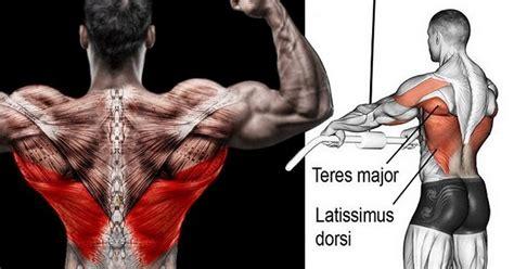 best lat exercises best bodybuilding back workout for lat width