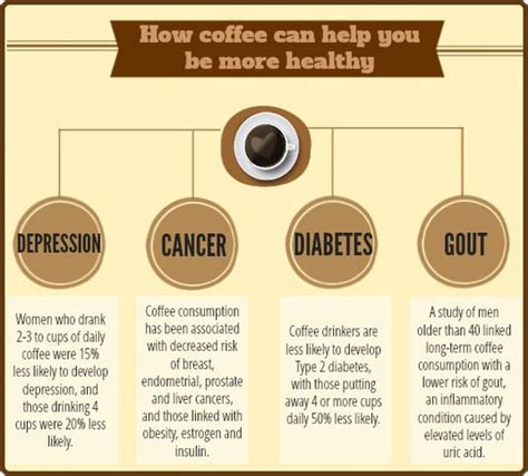 7 Facts About Coffee You Do Not by 7 Facts About Your Morning Coffee You Didn T