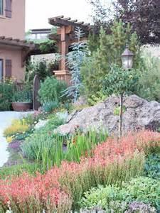 drought tolerant landscaping ideas drought tolerant