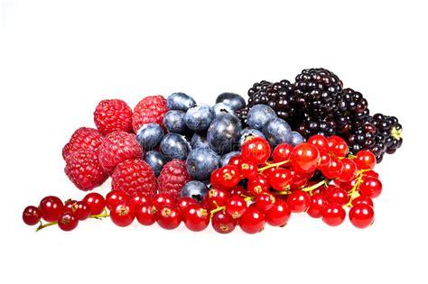 blaue und rote küche rote himbeeren schwarze beeren rote johannisbeeren und