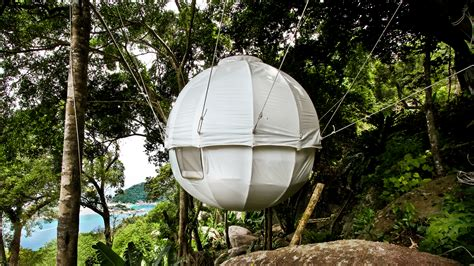 cocoon house 10 epic treehouses cooler than your apartment