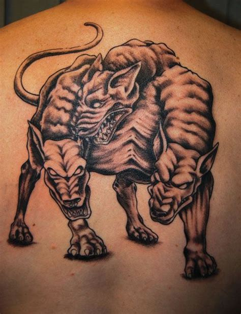 cerberus tattoo 34 best cerberus images on cerberus