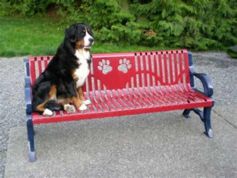 dog park benches deluxe dog paw bench