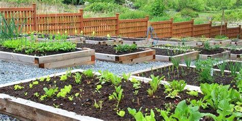 soil for vegetable garden dbzchild org