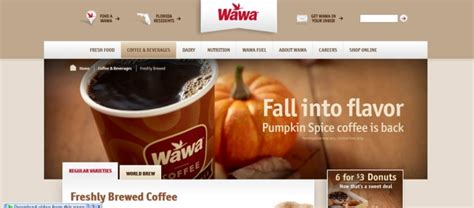 best coffee website web designs with coffee color schemes