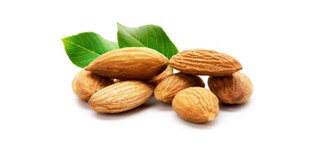All About Almonds 2 by Are Almonds As Healthy As Before With Pasteurization Laws