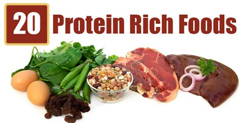protein rich foods top 20 high protein rich foods