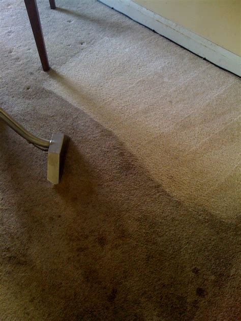 rug cleaning maryland maryland carpet cleaning carpet ideas