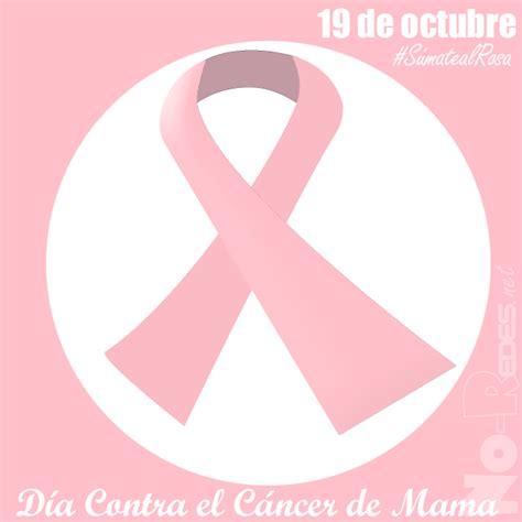 imagenes rosas contra el cancer imagenes de mo 241 o rosa del cancer miexsistir