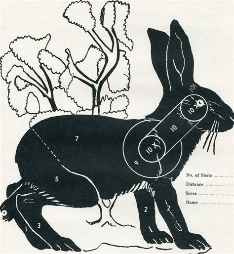 printable rabbit shooting targets vintage shooting target winchester jackrabbit