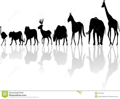 printable zoo animal silhouettes wild animal silhouette stock photography image 23104842
