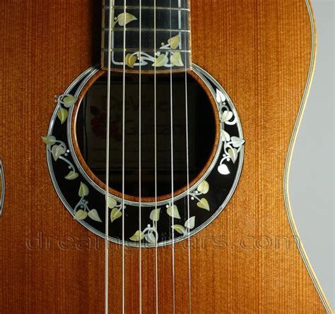 Up Guitar Spul Kq3 Diskon 112 best inlay images on the soul and bass