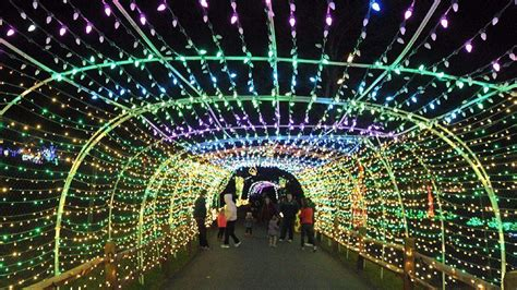 lehigh valley zoo s fourth annual winter light spectacular
