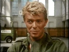 jack celliers gifs find share  giphy