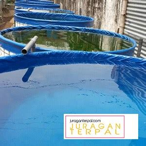 Jual Kolam Terpal Makassar harga kolam terpal juragan terpal
