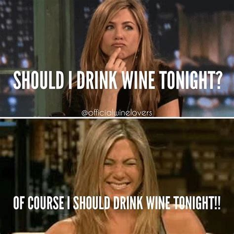 Red Wine Meme - 25 best ideas about wine meme on pinterest wine time