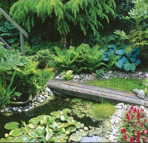 Backyard Habitat Ideas Garden Types And Styles Gardens Ranges And Garden Ponds