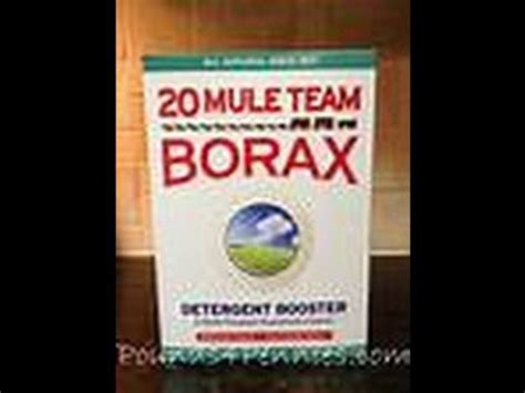 Prescription To Detox From Mold by Hygiene 101 Borax Fights Yeast Mold Radiation