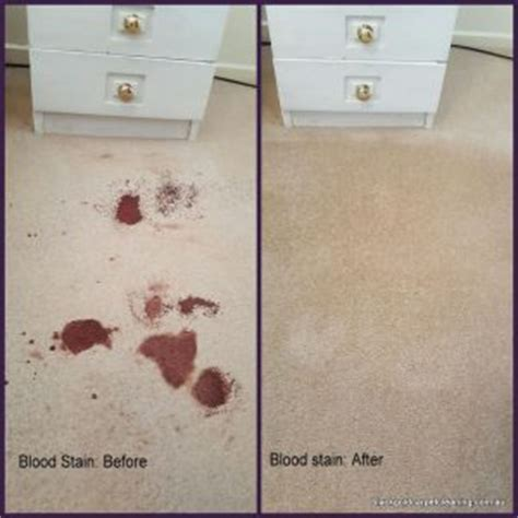the blood carpet books how to get blood stains out of carpet carpet stain removal